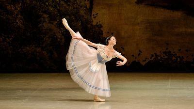 А вокруг меня летала балерина