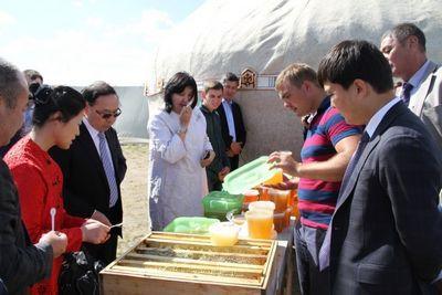 Акмолинский мед будет поставляться в китай