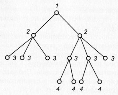Дерево человеческих связей
