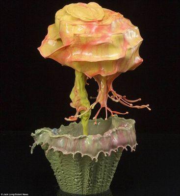 Джек лонг показал миру цветы из всплесков окрашенной воды