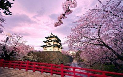 Фестиваль «японская весна» прошел в астане
