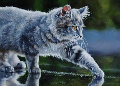 Художница кошек astrid bruning