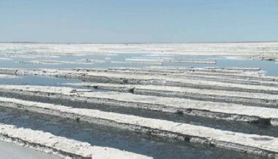 Импорт соли в россию из украины, ес и сша готов заменить «аралтуз»