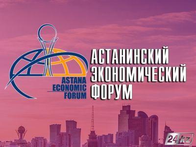 Инвестклимат казахстана обсудили в рамках аэф
