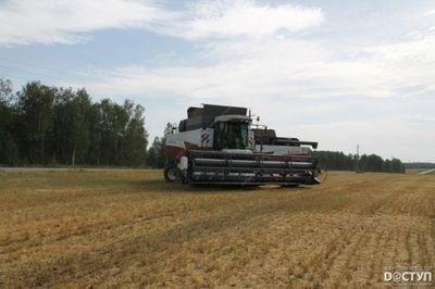 Южноуральским аграриям осталось обмолотить 240 тыс. гектаров - «новости челябинска»