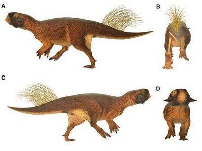Как раскрасить динозавра