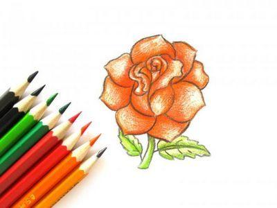 Как рисовать розу карандашом поэтапно