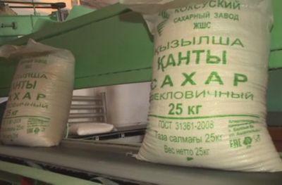 Коксуский завод выпустил первую партию сахара из свеклы нового урожая