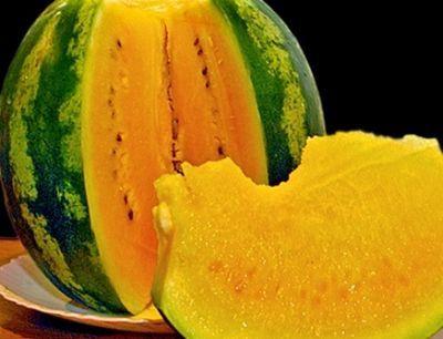 Костанайские полеводы удивляют хорошим урожаем и желтыми арбузами
