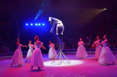 Международный цирк никулина продолжает гастроли в челябинске