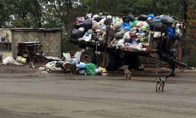 Мусорный коллапс в украине: 85% полигонов страны - стихийные