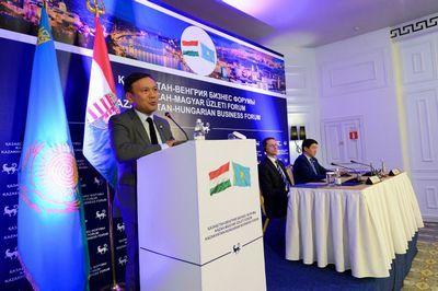 Налоговые послабления на 10 лет обещали венгерским бизнесменам в алматы