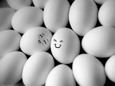 От яиц пользы больше, чем вреда