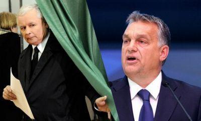 Польско-венгерская контрреволюция: «европейского народа несуществует», аес— «конюшня» - «экономика»