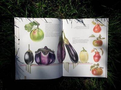 Портреты фруктов и овощей: руководство по рисованию акварелью