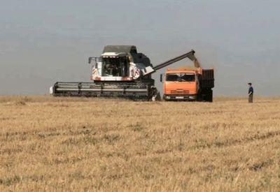Разработана новая программа помощи фермерам