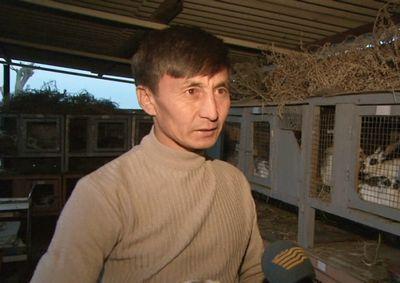 Разведение кроликов становится популярным в алматинской области