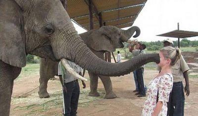Самые смешные фото из зоопарка (20 фото)