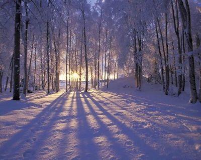 Секреты фотографии. съёмка зимой