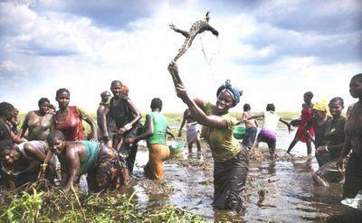 Такое можно увидеть только в африке (20 фото)