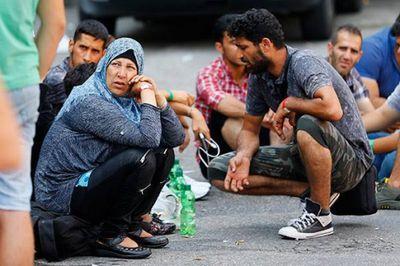 Только 30 тысяч беженцев трудоустроены в германии