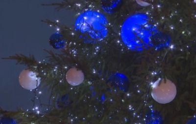 В риге проходит фестиваль рождественских елок