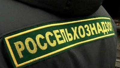 Вмолдавии откроют представительство россельхознадзора - «экономика»
