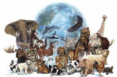 Всемирный день животных 4 октября