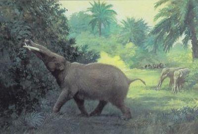 Животные, изменившие историю
