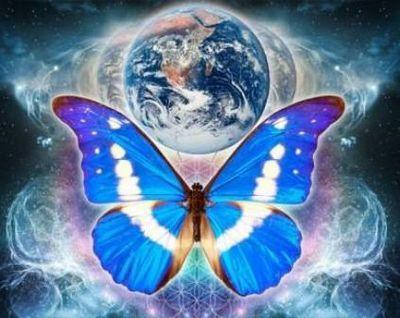 Значение бабочки. почему «эффект бабочки» интерпретируется совершенно неверно